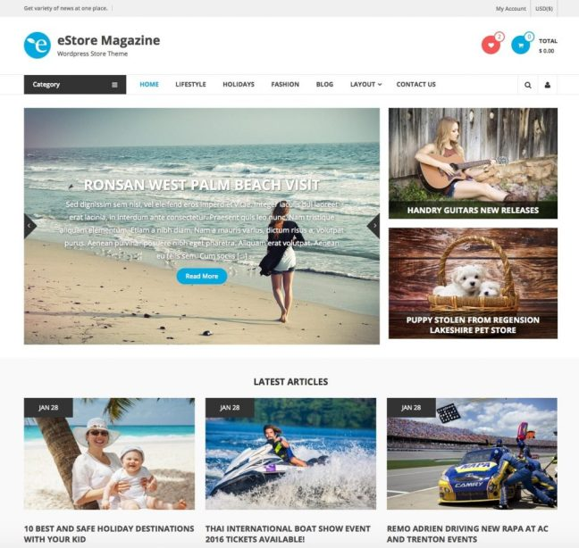 estore_free_magazine_wordpress_theme-1024x971